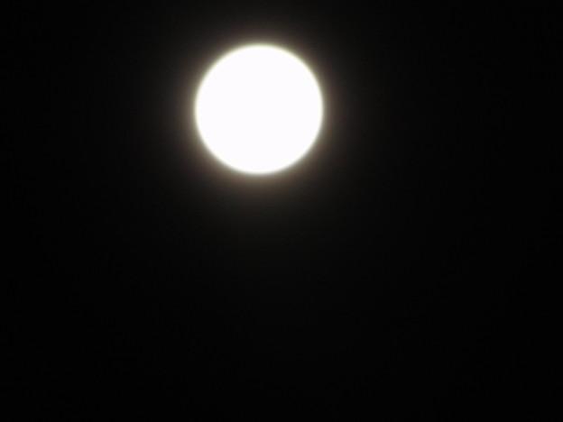 写真: 中秋の名月なう